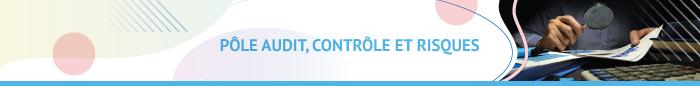 Pole audit controle et risques